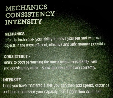 Mechanics Consistency Intensity